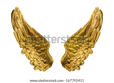 Symbolic composition of golden wings isolated onwhite. - stock photo