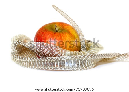 Symbolic representation of the serpent in the Garden of Eden and the Original Sin. - stock photo