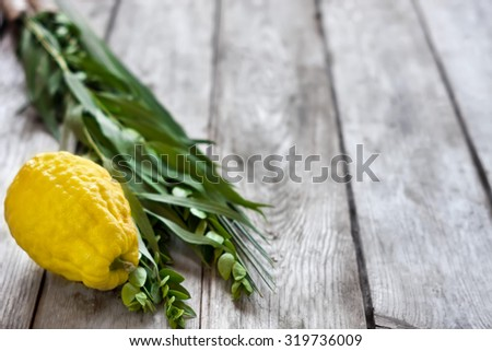 Symbols of jewish fall festival of Sukkot, lulav - etrog, palm branch, myrtle and willow - on old wooden background. - stock photo