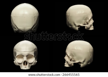 synthetic skull many angle view on black with clipping path - stock photo