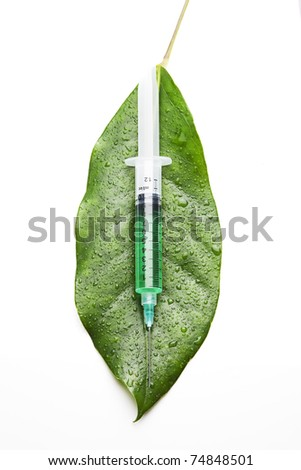 syringe on a leaf - stock photo