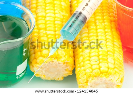 Syringe on corn against a white background - stock photo