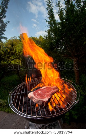 t bone steak on a grill outdoors - stock photo