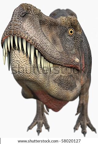 t-rex dinosaurs big head - stock photo