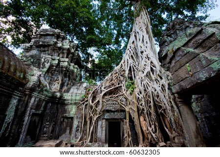 Ta Prohm temple also known as the Tomb Raider temple in the Angkor complex, Cambodia - stock photo