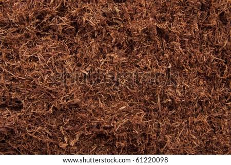 Tabacco studio shot for background use - stock photo