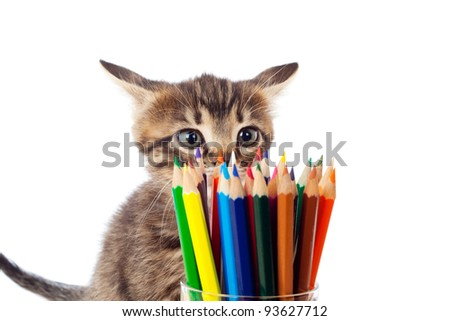 Tabby kitten sniffing color pencils in glass, isolated on white - stock photo