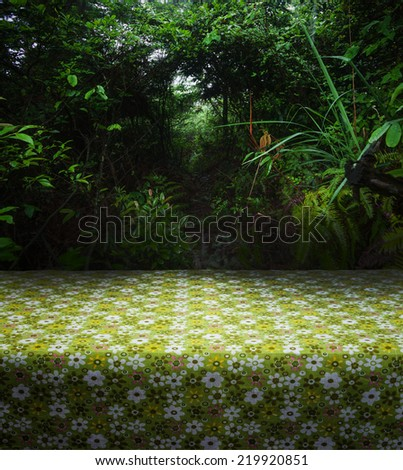 table cloth in the forest