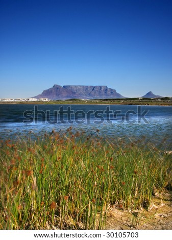 Table Mountain from Reitvlei Nature Reserve, Cape Town - stock photo