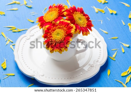 Table setting with cup full of pink gerbera daisy flowers on blue background with yellow petals. selective focus, shallow dof - stock photo