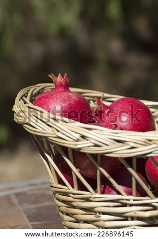 Table top with basket full of pomegranates against a green outdoor blurred background