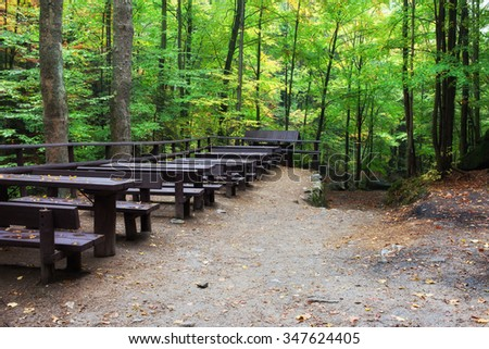 Tables with benches in forest, picnic and rest place in healthy natural environment - stock photo