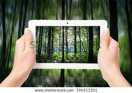 tablet computer in hand on the forest backgrounds - stock photo