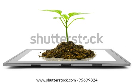 tablet computer isolated in a hand on the white backgrounds. tree - stock photo