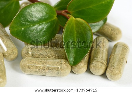 Tablets with a plant close-up. Medical concept