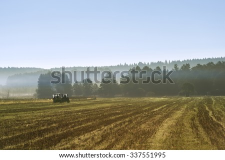 Tacks from tractor in a golden wheat field on a misty morning on Podlasie in Eastern Poland - stock photo