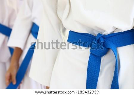 taekwondo belt - stock photo