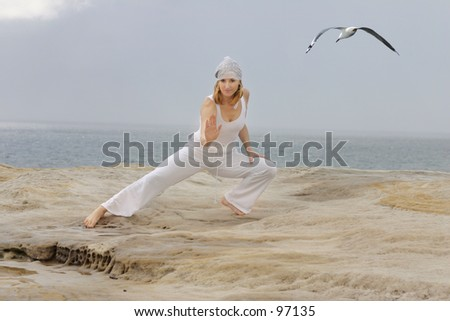 Tai chi movements are low impact exercises based on martial art - stock photo