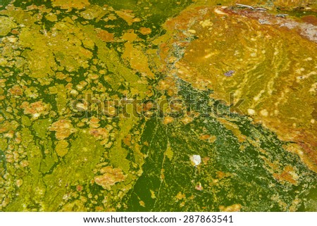 tainted water resources / water pollution - stock photo