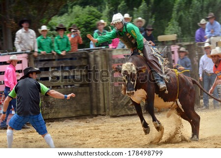 TAIPA, NZ - JAN 03:Bull riding on Jan 03 2014. Rodeo is very popular sport in New Zealand where approximately 32 rodeos, which include bull riding contests, are held each summer. - stock photo