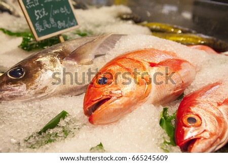 Aquatic stock images royalty free images vectors for Names of fish to eat