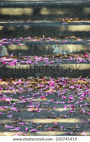 TAIWAN Stairs  and Floss-silk - stock photo