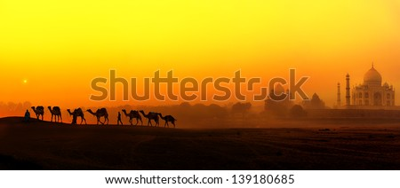 Taj Mahal Sunset view in India. Panoramic landscape with camels silhouettes and Tajmahal indian palace - stock photo
