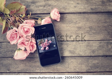 Take photo of roses  - stock photo