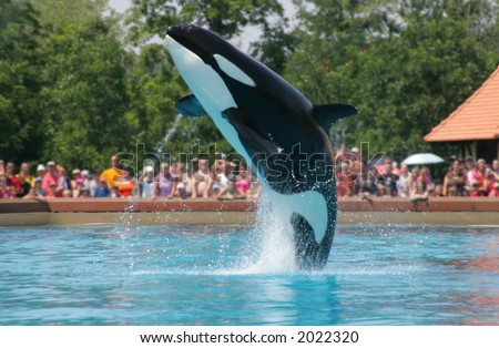 taken at niagara falls marineland
