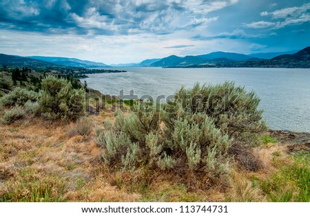 Taken from the bluffs along side Okanagan lake.  The town of Naramata is on the left shore.  The Okanagan region has some unique plants due to its dry desert climate. - stock photo