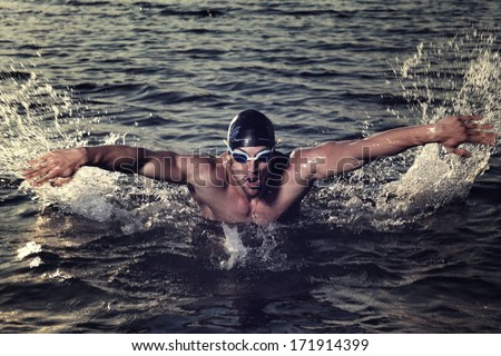 Taking breath swimming butterfly in  lake at sunset. - stock photo