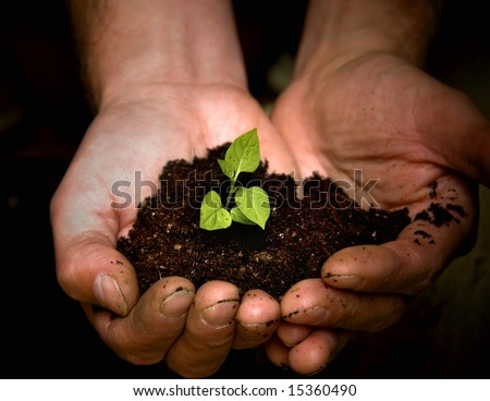 Taking care of new development or the environment - stock photo