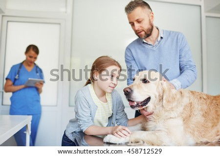 Taking dog to veterinarian