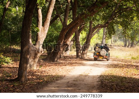 TALA, INDIA - JANUARY 09, 2015 : A safari jeep on a trail through forest in Bandhavgarh National Park in Madhya Pradesh. The park is a popular tourist destination with opportunities to spot tigers. - stock photo