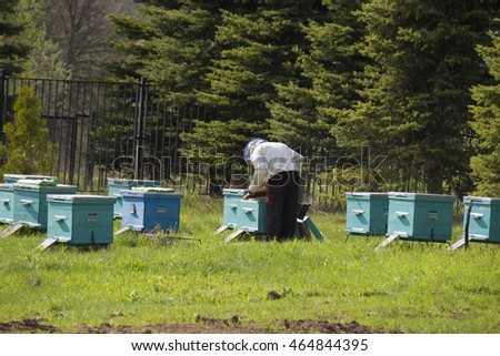 TALEZH/RUSSIAN FEDERATION - MAY 05 2016: a beekeeper standing at the hives