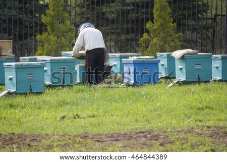 TALEZH/RUSSIAN FEDERATION - MAY 05 2016: a beekeeper working with the hives in spring, back view