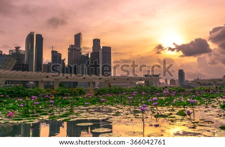 Tall buildings reflecting in a water during sunset