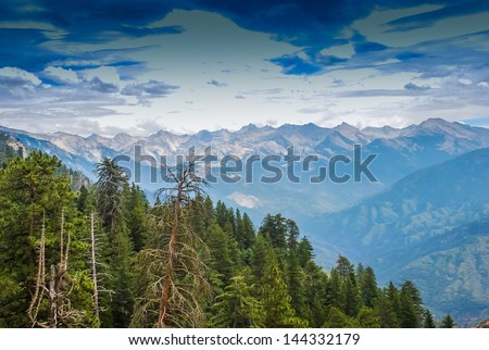 Tall Trees with a view into the distant mountains, taken in the Giant Forest of Sequoia National Park in Tulare County, California. taken in 2007 - stock photo