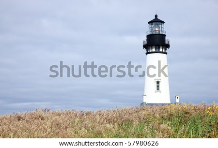 Tall white lighthouse with arid grass and wildflowers in foreground