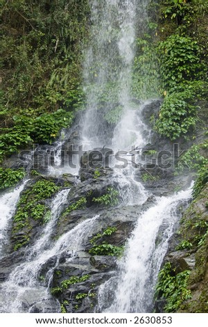 Tamaraw waterfall in the rainforest on the island of Mindoro in Philippines