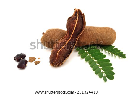 Tamarind and leaves on isolated white background - stock photo