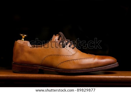 Tan Mens fashionable dress and business shoes - stock photo