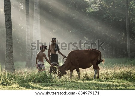 Tanah Embet village, West Lombok, Indonesia - April 23, 2017 : Farmer caring for his cow