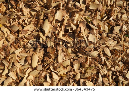 Tanaka bark texture background