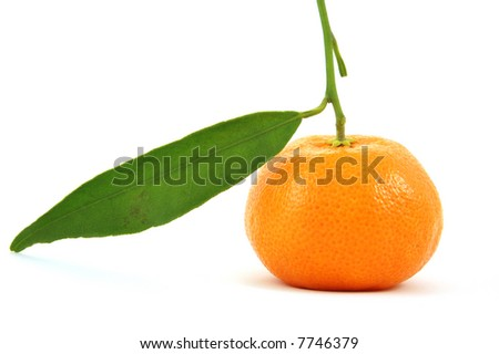 Tangerine isolated on pure white background
