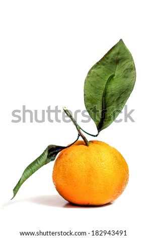 Tangerine orange with green leaves isolated over a white background. - stock photo