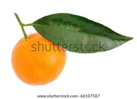 Tangerine with a green leaf on a white background