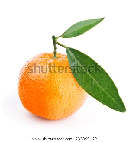 tangerine with leaves isolated on white background - stock photo