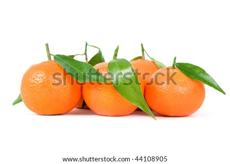 Tangerines with leafs on a white background