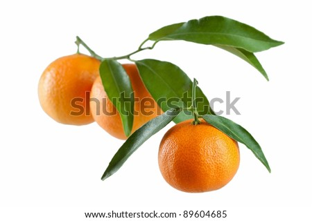Tangerines with leaves on a white background - stock photo
